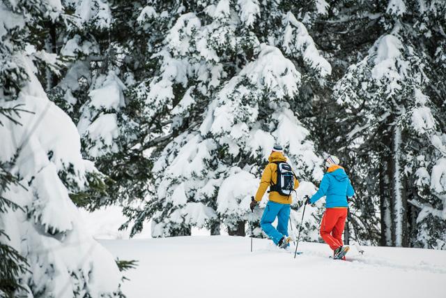 escursioni e ciaspolate sulla neve stubaital