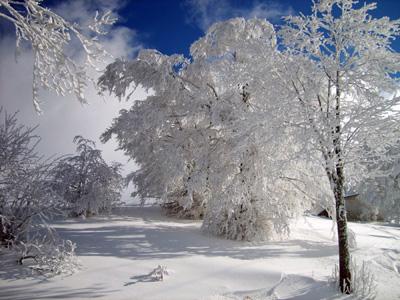 sciare vicino a roma